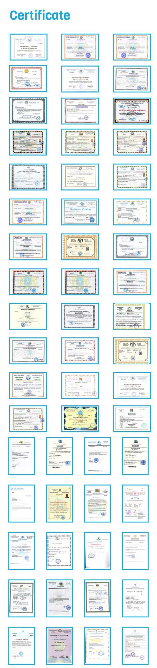 Certificate-01 (1)